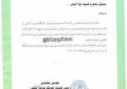 فستیوال کمیته هنرهای فردی توآکشور ۸بهمن ماه استان البرز